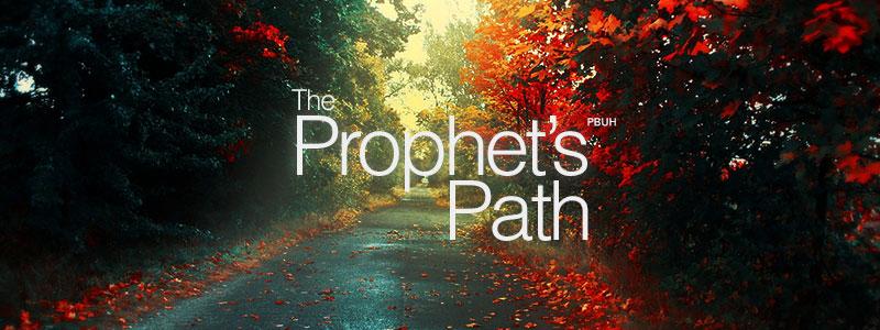 ProphetPath